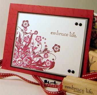 cc157-basic-pomegrantes-embrace-life.jpg